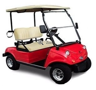 EVOLUTION 2 SEAT ELECTRIC GOLF CART Buggy